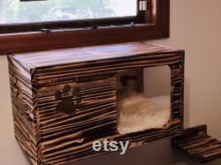 1 Kitty-Studio 2 FREE Steps