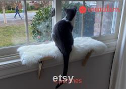 4 Cat Window Perches Cat Shelf Window Sill No Tools Installation No Nails or Velcro Needed Installed and Removed in 1 minute