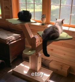 BIG CATS Real Wood Cat Tree The SAPLING V.2 by JMLPets Read on It's a Long Lasting Investment in your cat's health and well-being