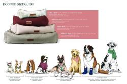 Hugger Bed in Russet Rover Designer Dog Bed for Small to X-Large Dogs Modern Bolster Pet Bed Durable Sunbrella Fabric