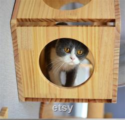 Wall-mounted Cat Climbing Frame Cat Tree Hexagonal Space Capsule Cat Wall Play House Cave Kitten Toy Bed DIY Pet Furniture