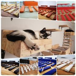 free shipment cat, cat lover gift, cat bed, cat furniture, cat gift, cat decor, cat shelf, cat beds, cat pillow, cat shelves, pet, modern