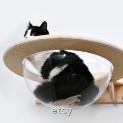 Chaise Longue Transparente Montée Sur Le Mur Pour Chats Toumey