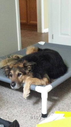 Dog Bed 4 Tailles Choisissez 15 Couleurs De Toile, 11 Couleurs De Maille, Lit Surélevé, Grands Lits D'été, Lit De Chien Surélevé En Toile Moyenne, Chiens Jusqu'à 130 Livres.