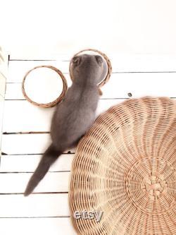 Maison De Chat Ronde, Wicker Pet House, Meubles De Chat, Meubles De Chat, Lit De Chat Fait Main, Lit De Chat Design, Lit De Chat Pour Chats, Lit De Chat, Panier De Chat