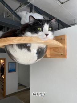 Mur Monté En Bois Cat Space Capsule Cat Bed Small Pets Bed Cat Toy Cat Furniture